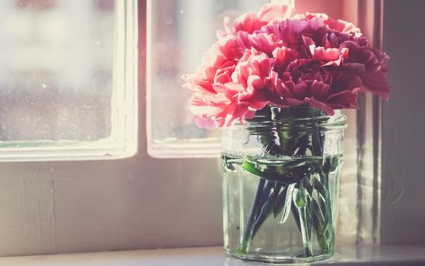 cvety-lepestki-rozovye.jpg
