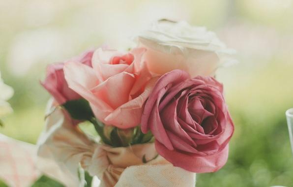 rozy-cvety-lepestki-3577.jpg