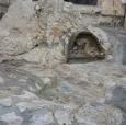 이스라엘 탐방(22) - 겟세마네 동산