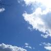 하늘이 저렇게 파란데....